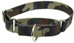 Martingale collar for big sight hounds