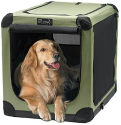 Large dog carrier with a view