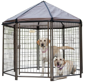 Best large dog kennel for peace of mind