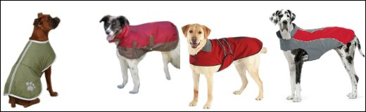 Big dog coats for large dogs