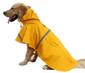 Big dog raincoat to keep dry
