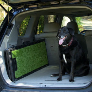 Dog ramps help save joints